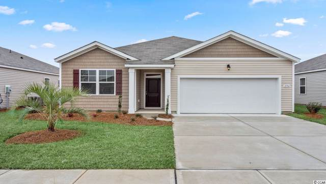 2966 Skylar Dr., Myrtle Beach, SC 29577 (MLS #1920421) :: The Litchfield Company