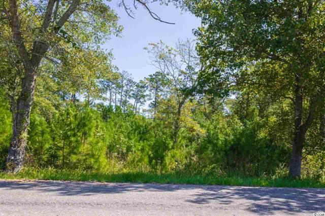 8863 Henrietta Bluff Rd., Conway, SC 29526 (MLS #1920609) :: The Hoffman Group