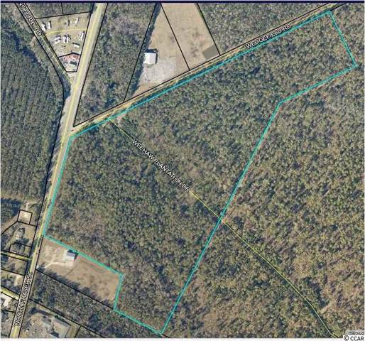 TBD Weehaw Plantation Dr., Georgetown, SC 29440 (MLS #1920664) :: Jerry Pinkas Real Estate Experts, Inc