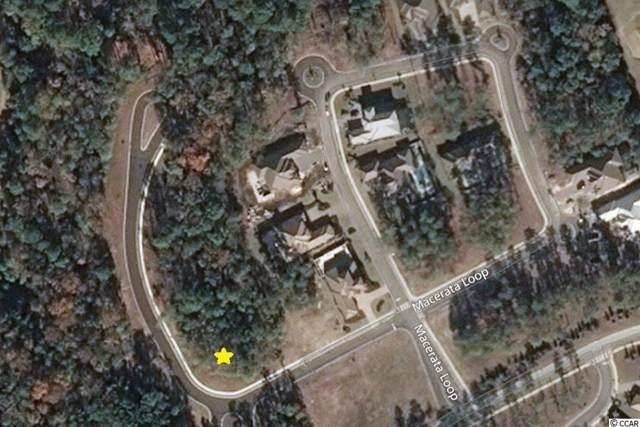 2038 Teramo Dr., Myrtle Beach, SC 29579 (MLS #1920813) :: SC Beach Real Estate