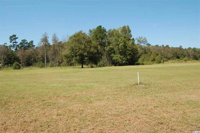 TBD State Rd., Conway, SC 29527 (MLS #1921099) :: The Lachicotte Company