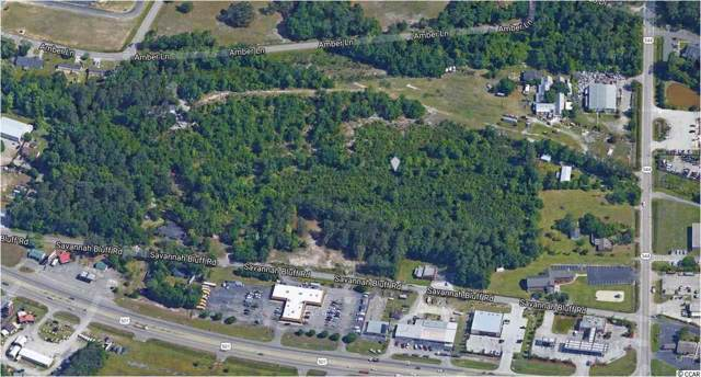 162 Acres Old Savannah Rd., Conway, SC 29526 (MLS #1921950) :: The Lachicotte Company