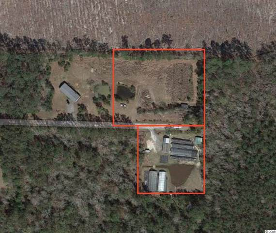 3.1 Acres Chatsworth Ct., Georgetown, SC 29440 (MLS #1922235) :: The Greg Sisson Team with RE/MAX First Choice