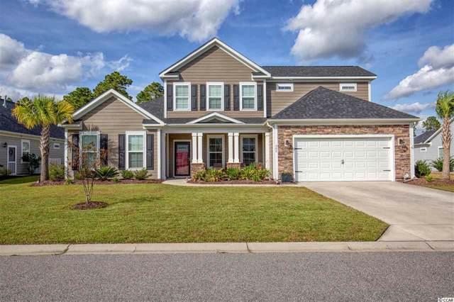 362 Babylon Pine Dr., Myrtle Beach, SC 29579 (MLS #1922307) :: Jerry Pinkas Real Estate Experts, Inc