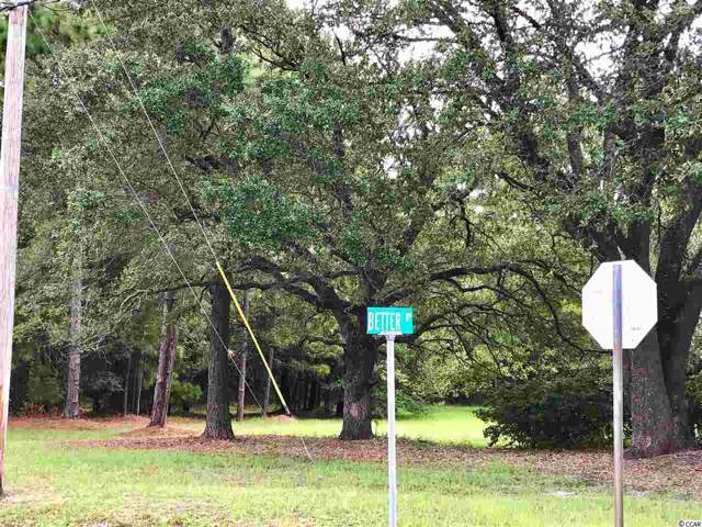 1 Better Way, Georgetown, SC 29442 (MLS #1922502) :: The Greg Sisson Team with RE/MAX First Choice