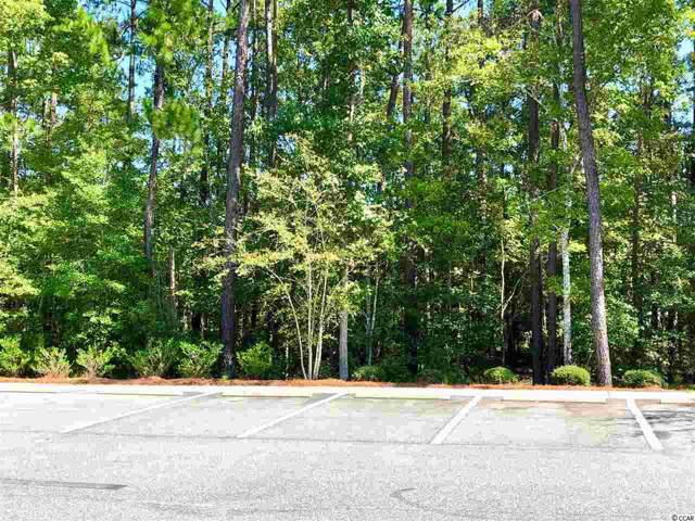 Highway 17 Bypass, Myrtle Beach, SC 29588 (MLS #1922511) :: Hawkeye Realty