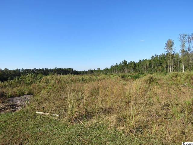 Old Lumberton Rd., Whiteville, NC 28472 (MLS #1922572) :: The Lachicotte Company