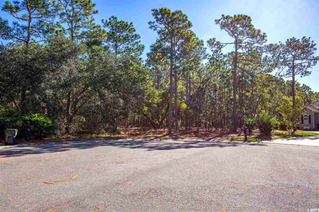 19 Vintage Dr., Pawleys Island, SC 29585 (MLS #1922604) :: The Litchfield Company