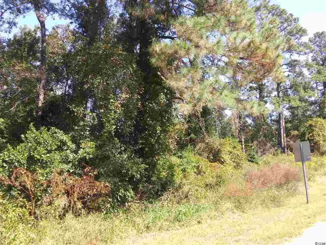 256 Slabtown Rd., Sellers, SC 29592 (MLS #1922696) :: James W. Smith Real Estate Co.