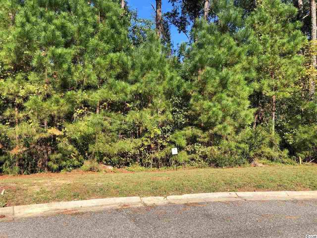 Lot 16 Rivers Edge Dr., Conway, SC 29526 (MLS #1922869) :: The Hoffman Group