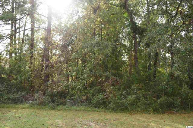 4056 Forest Lake Dr. Sw, Shallotte, NC 28470 (MLS #1923138) :: Welcome Home Realty