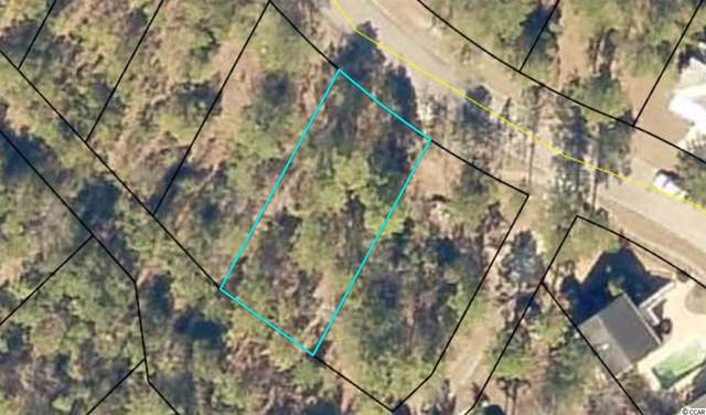 63 Madison Dr., Georgetown, SC 29440 (MLS #1923281) :: Hawkeye Realty