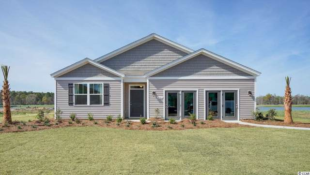 203 Carmello Circle, Conway, SC 29526 (MLS #1923288) :: The Hoffman Group