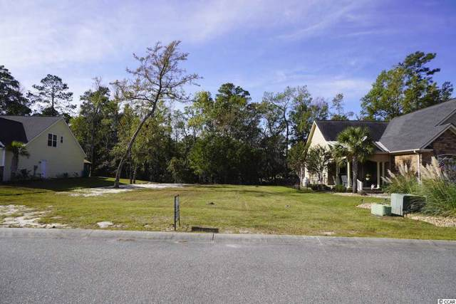 124 Swallowtail Ct., Little River, SC 29566 (MLS #1923295) :: The Hoffman Group
