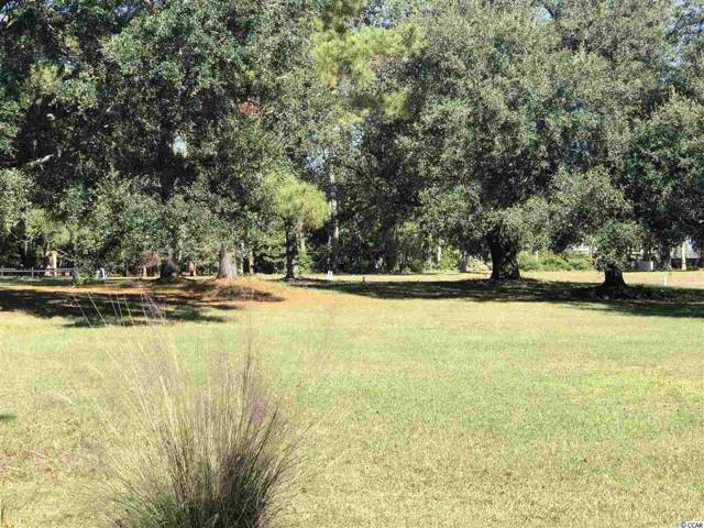 Lot # 138 South Bay St., Georgetown, SC 29440 (MLS #1923326) :: The Litchfield Company