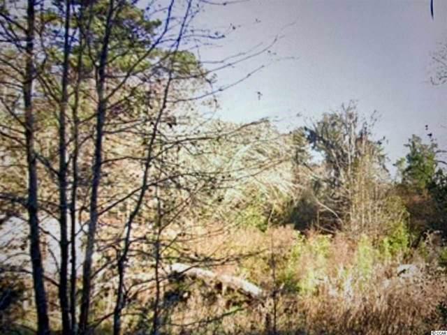 1058 Savannah Bluff Rd., Conway, SC 29526 (MLS #1923710) :: The Hoffman Group