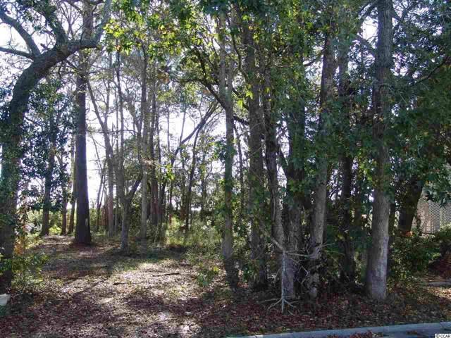 71 Grackel Ln., Pawleys Island, SC 29585 (MLS #1923724) :: The Trembley Group | Keller Williams