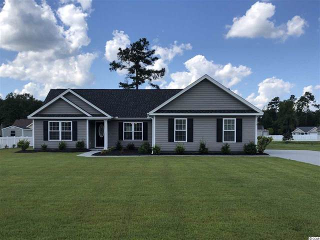 116 Timber Run Dr., Georgetown, SC 29440 (MLS #1923774) :: The Lachicotte Company