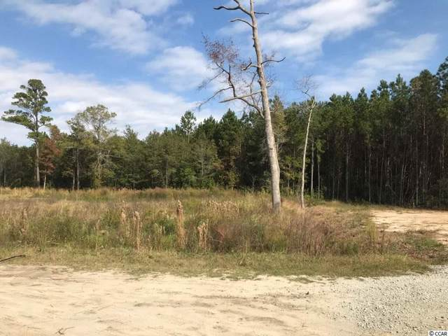 63 Acs West Homewood Rd., Conway, SC 29526 (MLS #1923851) :: The Hoffman Group
