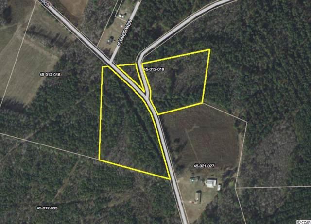 10.6 Longbranch Rd., Greeleyville, SC 29056 (MLS #1923852) :: The Hoffman Group