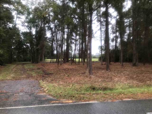 2.6 Acres Long Avenue Ext., Conway, SC 29526 (MLS #1923865) :: The Lachicotte Company