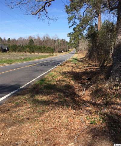 Lot 3A Dog Bluff Rd., Galivants Ferry, SC 29544 (MLS #1923897) :: James W. Smith Real Estate Co.