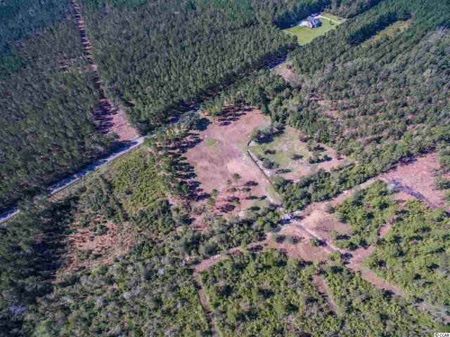 Lot C Alma Rd., Nichols, SC 29581 (MLS #1923901) :: The Hoffman Group