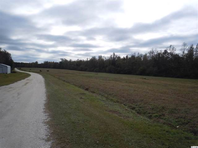 TBD-Lot B G & B Estates Ave., Whiteville, NC 28472 (MLS #1923990) :: The Lachicotte Company