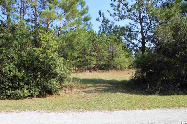 1422 Daisy Rd., Loris, SC 29569 (MLS #1924185) :: Right Find Homes