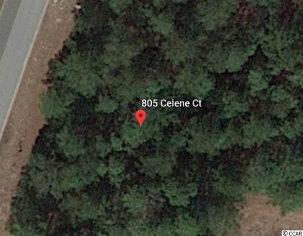 805 Celene Ct., Myrtle Beach, SC 29579 (MLS #1924349) :: The Hoffman Group