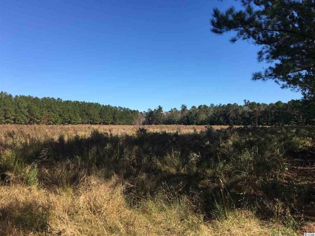 TBD Dirty Branch Rd., Conway, SC 29527 (MLS #1924352) :: The Litchfield Company