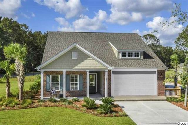 366 Harbison Circle, Myrtle Beach, SC 29579 (MLS #1924703) :: Leonard, Call at Kingston