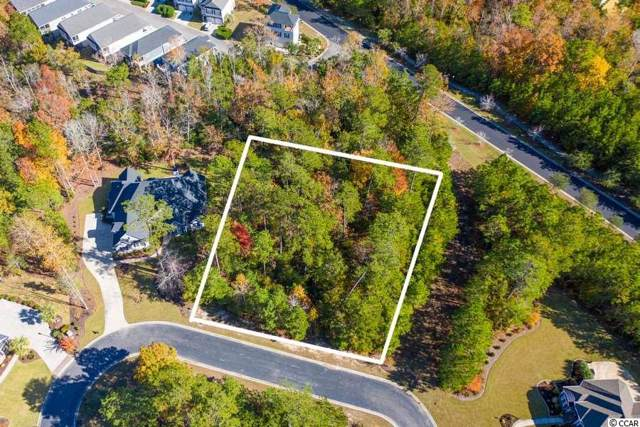 32 Cane Break Way, Murrells Inlet, SC 29576 (MLS #1925130) :: The Lachicotte Company