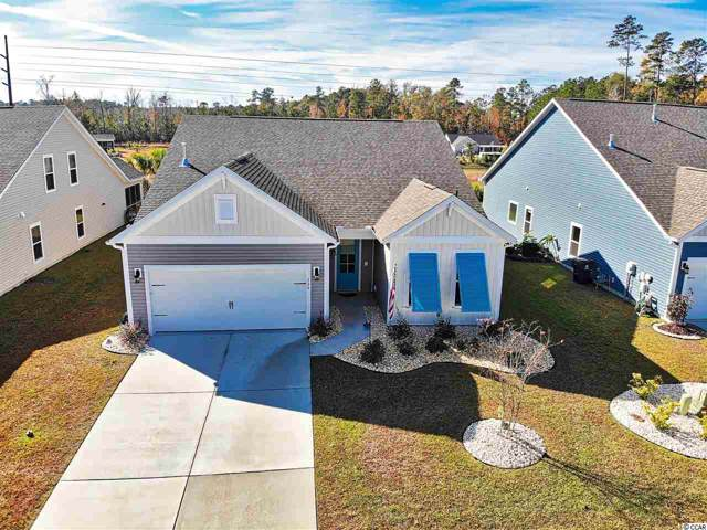220 Angel Wing Dr., Myrtle Beach, SC 29588 (MLS #1925337) :: The Trembley Group | Keller Williams