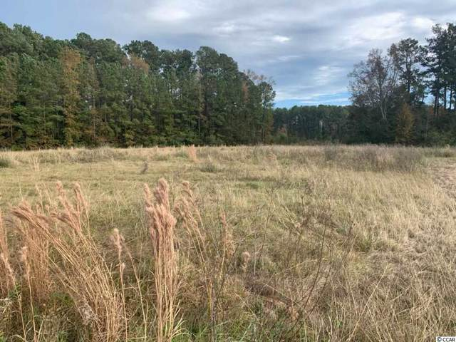 000 County Line Rd., Andrews, SC 29510 (MLS #1925414) :: The Lachicotte Company