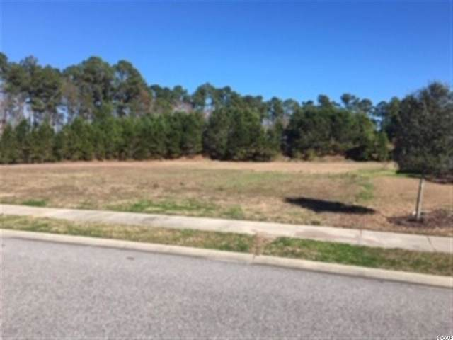 Lot 451 Wood Stork Dr., Conway, SC 29526 (MLS #1925482) :: The Litchfield Company