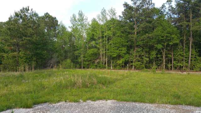 TBD Highway 701 North, Conway, SC 29526 (MLS #1925529) :: The Litchfield Company