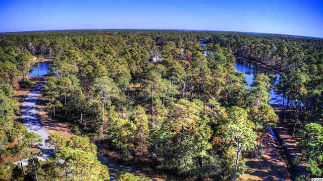 Lot 147 Ocean Lakes Loop, Pawleys Island, SC 29585 (MLS #1925606) :: Right Find Homes
