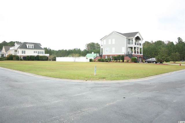 161 Pottery Landing Dr., Conway, SC 29527 (MLS #1925847) :: The Litchfield Company
