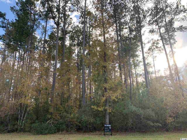 Lot 161 Trestle Way, Conway, SC 29526 (MLS #1925860) :: The Hoffman Group