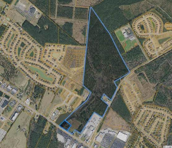 2430-2440 Highway 501, Conway, SC 29526 (MLS #1925932) :: The Lachicotte Company