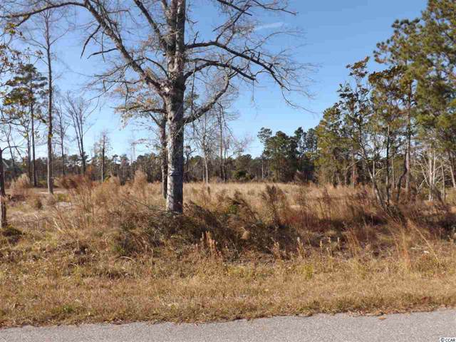 472 Sellers Rd., Conway, SC 29526 (MLS #1925955) :: Jerry Pinkas Real Estate Experts, Inc