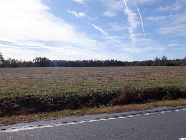 710 Mitchell Swamp Rd., Loris, SC 29569 (MLS #1925999) :: The Hoffman Group