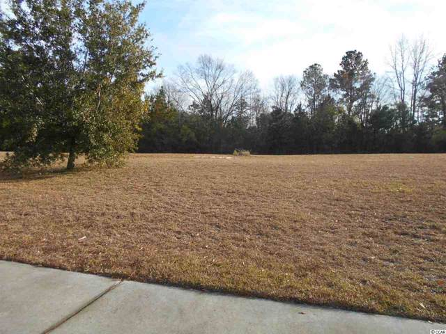 1236 Woodstork Dr., Conway, SC 29526 (MLS #1926047) :: Right Find Homes
