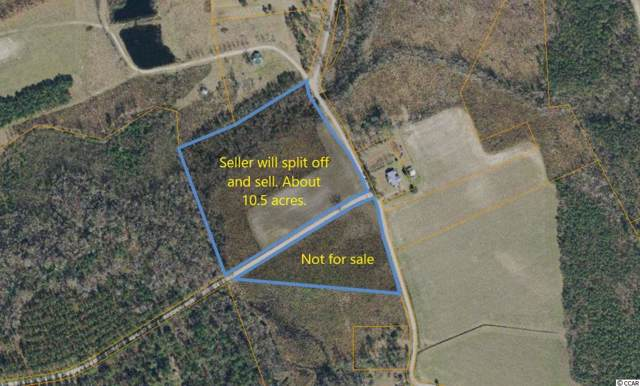 TBD Womack Rd., Nichols, SC 29581 (MLS #1926214) :: Right Find Homes