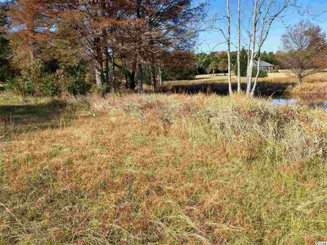 TBD White Oak Dr., Manning, SC 29102 (MLS #1926309) :: Coastal Tides Realty