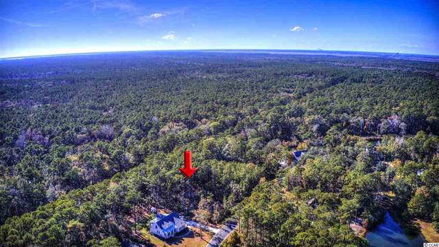 Lot 48 Lantana Circle, Georgetown, SC 29440 (MLS #1926387) :: Garden City Realty, Inc.