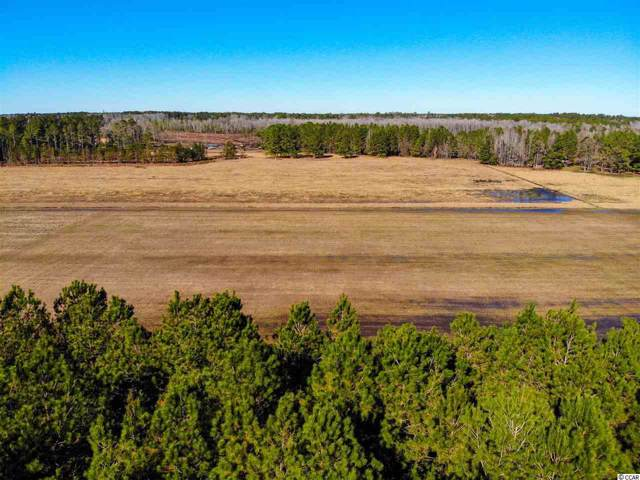 Parcel D Pauley Swamp Rd., Conway, SC 29526 (MLS #1926925) :: The Greg Sisson Team with RE/MAX First Choice