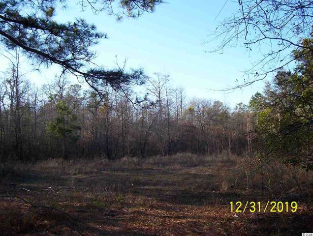 885 Rowe Pond Rd., Conway, SC 29526 (MLS #2000071) :: Hawkeye Realty