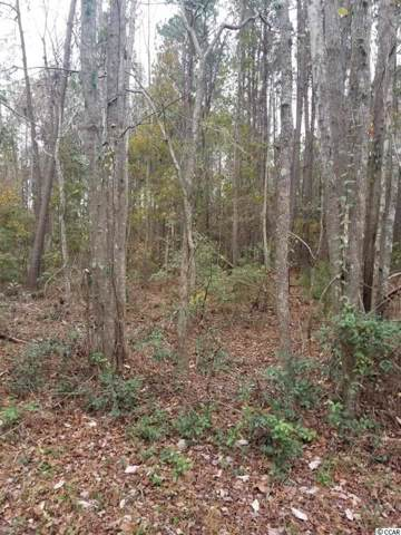 TBD Martin Luther King Rd., Pawleys Island, SC 29585 (MLS #2000240) :: The Litchfield Company